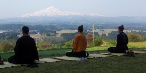 Dive Into Reiki Meditation & Healing Circle