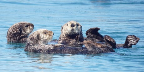 Southeast Sea Otter Stakeholder Meeting tickets