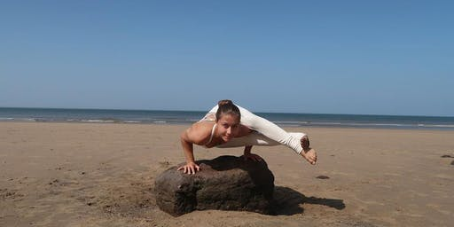 Peak Pose Process Yoga Workshop - Braving Arm-Balances