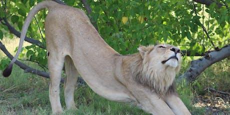 Go Wild in Botswana! tickets