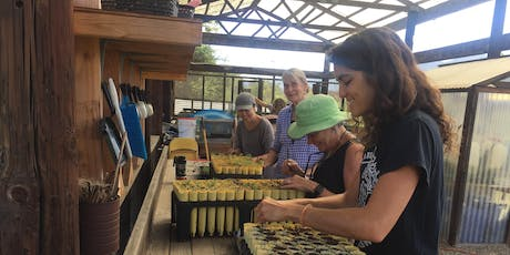 Native Plant Propagation Workshop: Cuttings and Seeds tickets