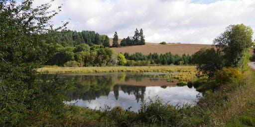 Westside wetland adventure