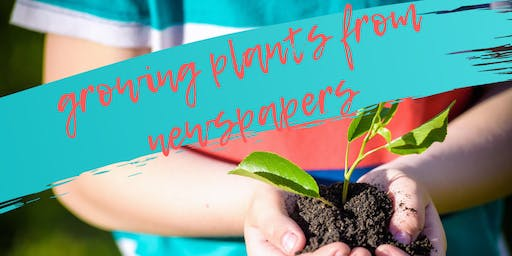 Growing Plants from Newspapers