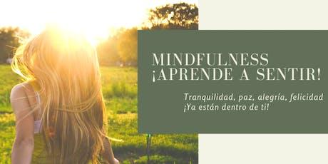 3ª Práctica de Mindfulness entradas
