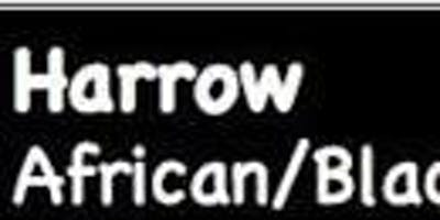 Harrow African Season 2019: Get Up Stand Up - Raising The New African Consciousness