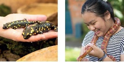 Suntrap Roadshow Meet The Animals @ Chingford Library