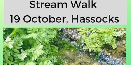 Stream Walk tickets