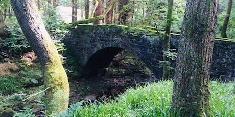 Art Hike 43: Hardcastle Crags Circular tickets