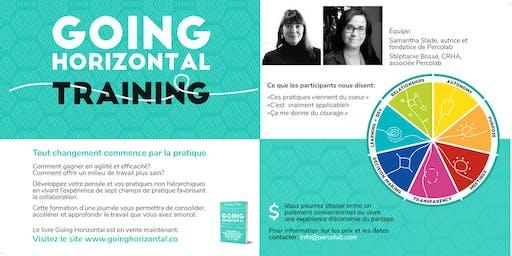 Atelier de pratique Going Horizontal / Going Horizontal Practice Workshop