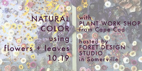 WORKSHOP: natural dyeing with flowers + leaves tickets