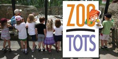 ZooTots October 17th, 2019: Taboo the Tarantula!