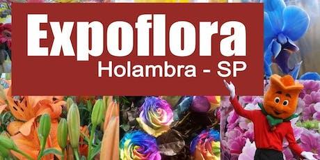 Excursão para  Expoflora 2019 Holambra  dia 29/09/2019 - Pacote Individual. ingressos
