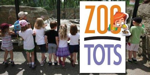 ZooTots January 16th, 2020: Stevie the Gecko!