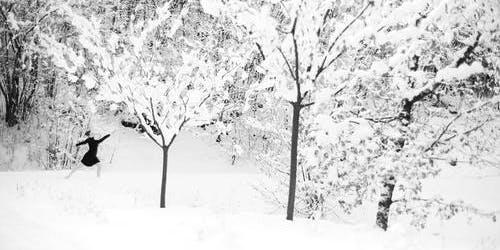 """""""Winter Wonderland"""" - The Ballet"""