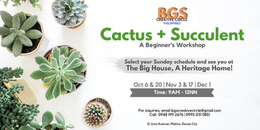 Cactus and Succulents: A Beginner's Workshop
