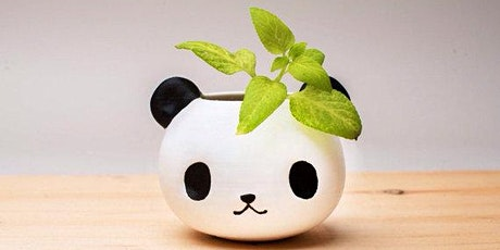 Make a panda planter in Olean tickets
