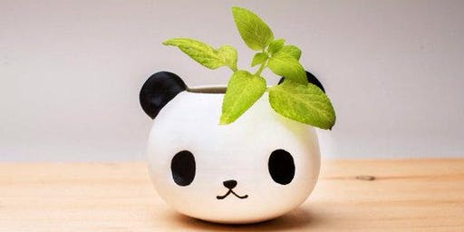 Make a panda planter in Olean