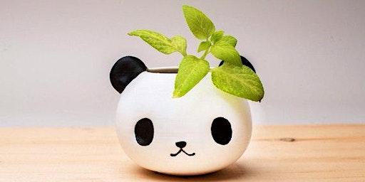 Make a panda planter in Olean