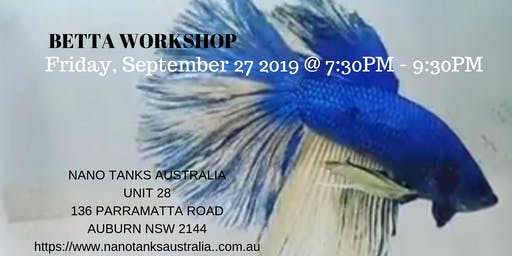 Betta Workshop for Beginners to Advance Hobbyist