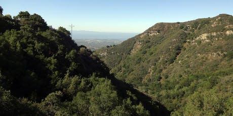 Medicinal Herb Walks of Santa Barbara - Cold Spring Trail tickets