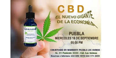 CBD MEXICO - EL NUEVO GIGANTE DE LA ECONOMÍA