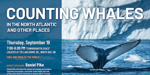 Counting Whales in the North Atlantic and Other Places