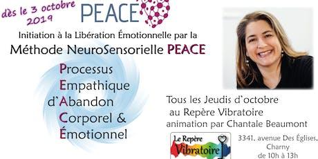 Libération Émotionnelle avec la Méthode PEACE billets