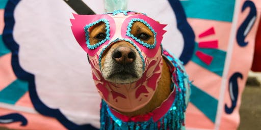 21st Annual Great PUPkin Dog Costume Contest