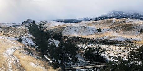Winter Wolf, Wildlife Watching & Hot Springs Getaway tickets