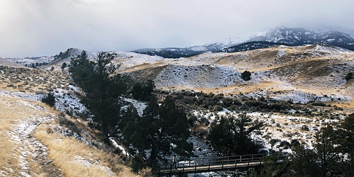 Winter Wolf, Wildlife Watching & Hot Springs Getaway