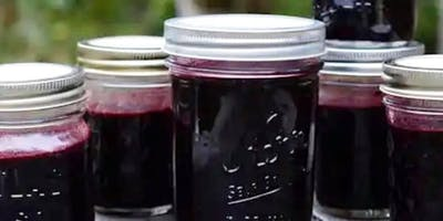 Elderberry Syrup Making Class!