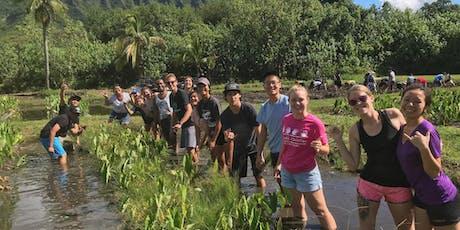 Kualoa/Hakipuʻu Loʻi - taro planting and harvesting tickets