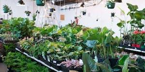 Melbourne - MEGA Indoor Plant Sale - Springtime...