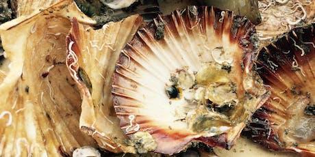 Celebrating Shellfish Reef Restoration in Australia tickets