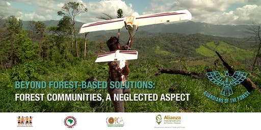Beyond forest-based solutions: forest communities, a neglected aspect