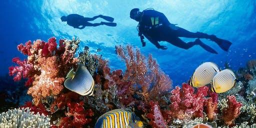 AG - Scuba Diving Fall 2019