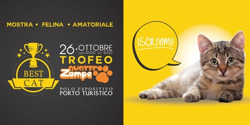 The Best Cat 2019 - Mostra Felina Amatoriale