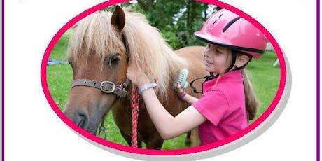 Discount pony experience - Mondays tickets