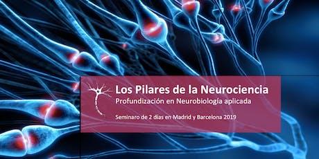 Los Pilares de la Neurociencia 18 & 19 Enero.-MAD entradas