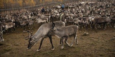 Lärarkväll på Nordiska museet: tema samisk kultur