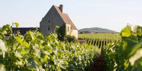 Burgundy Masterclass with Maison Vincent Girardin tickets
