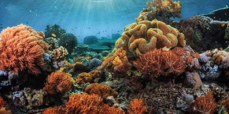 Coralline Algae and Coral Reefs: Circulating Knowledge about How Plants Make Reefs  tickets