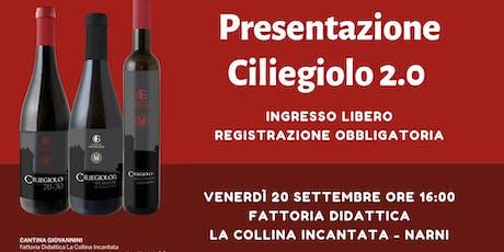 Presentazione Vino Ciliegiolo 2.0 con visita al vigneto e degustazione vino biglietti