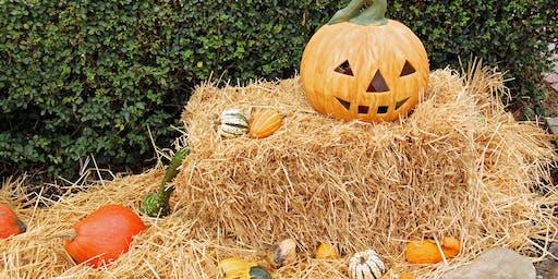 Spooktacular Pumpkin Carving