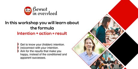 How to achieve your real goals - Workshop by Bewust in overvloed tickets