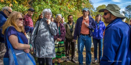 TREES OF ROCKEFELLER PRESERVE: Tree ID Walk with John McShane tickets