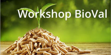 Workshop BioVal billets