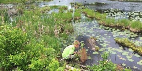 United Way THC Beaver Pond Tour/Randonnée de l'étang des castors Centraide TPC tickets