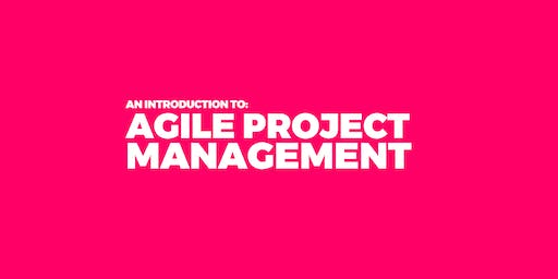 An Introduction to Agile Project Management
