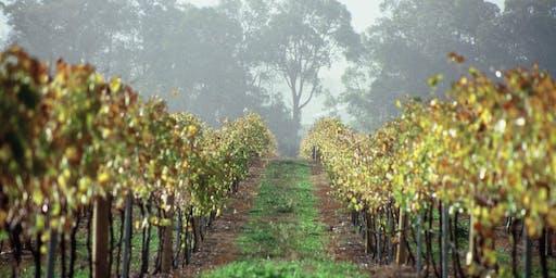 2019 Western Australian Premium Wine Tasting | Consumer Event